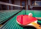 В Червонограді популяризують настільний теніс