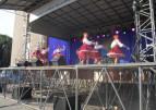 Червоноградські таланти виступили зі сцени в День незалежності